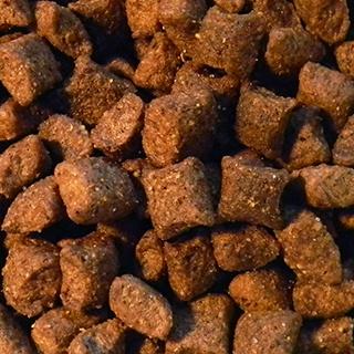 Obrázek pro kategorii krmivo pro fretky
