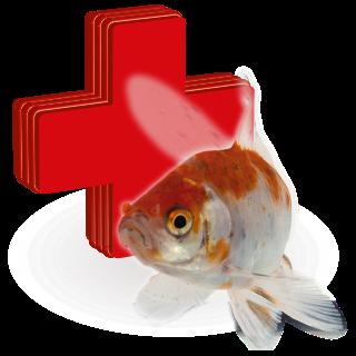Obrázek pro kategorii léčiva pro jezerní ryby